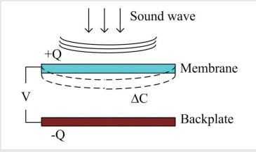 图1 电容式麦克风的结构原理