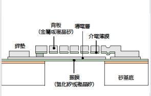 图2 MEMS 麦克风感测晶片的构造示意图